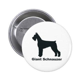 Schnauzer gigante pin