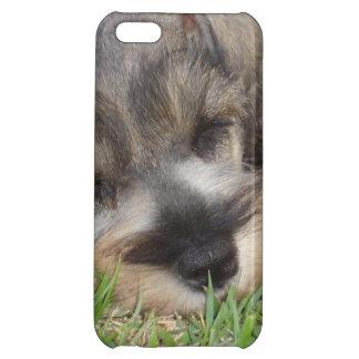 Schnauzer Cover For iPhone 5C