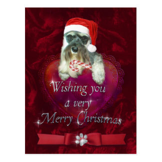 Schnauzer Merry Christmas Postcard