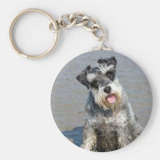 Schnauzer miniature dog cute beautiful photo beach keychain