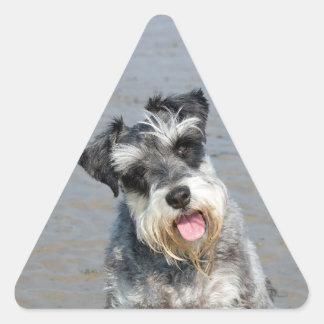 Schnauzer miniature dog cute beautiful photo beach triangle sticker