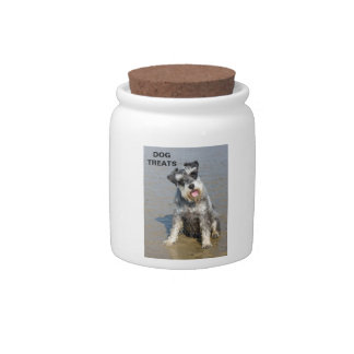 Schnauzer miniature dog cute photo at beach, gift candy jar