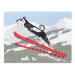 Schnauzer on Skis! Postcard