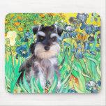 Schnauzer Pup 10Znat - Irises Mouse Pad