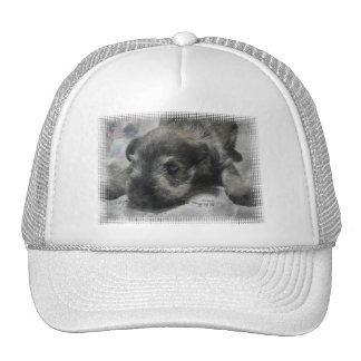 Schnauzer Puppy Baseball Cap Trucker Hat