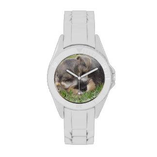 Schnauzer Reloj De Mano