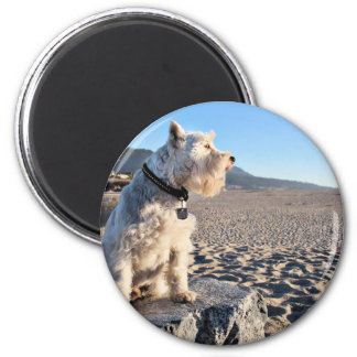 Schnauzer - Tin Tin Fridge Magnet