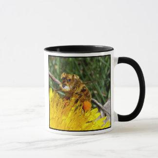 Schnauzerbee mug