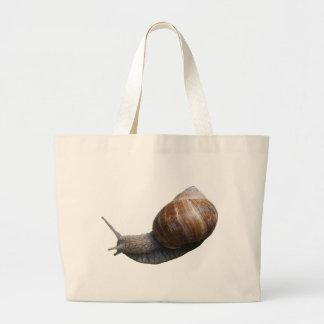 schnecke snail