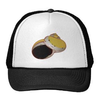 Schneckenhaus sea snail sea snail shell trucker hat