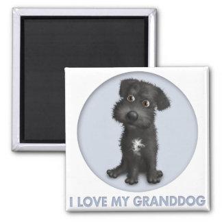 Schnoodle (Black) Granddog Fridge Magnet