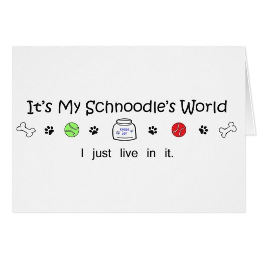 Schnoodle Card