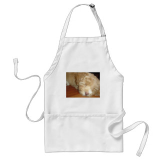 Schnoodle Puppy Sleeping Adult Apron