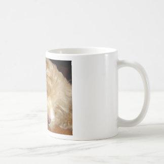 Schnoodle Puppy Sleeping Classic White Coffee Mug