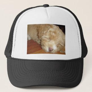 Schnoodle Puppy Sleeping Trucker Hat