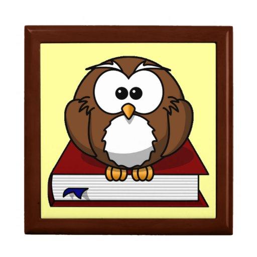 Scholarly Owl Jewelry Boxes
