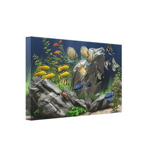 School at the Rocks Aquarium Canvas Print
