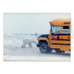 School bus and bear greeting cards