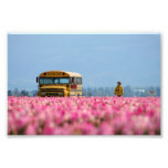 School Bus, Magic Bus. Photo Print