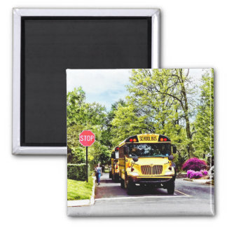 School Buses At Stop Sign In Spring Magnet