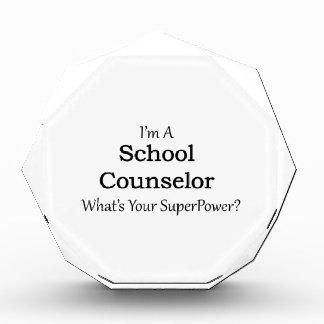 School Counselor Award