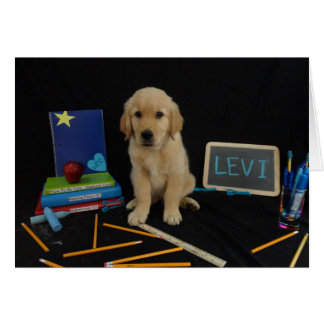 School Levi Greeting Card