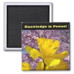 School Locker magnets Knowledge is Power!