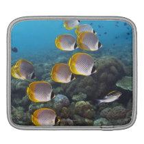 School of angelfish iPad sleeve