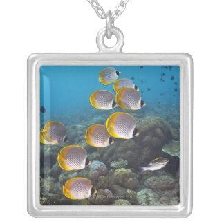 School of angelfish square pendant necklace