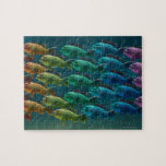 School of black sea bass in the colors of the jigsaw puzzle
