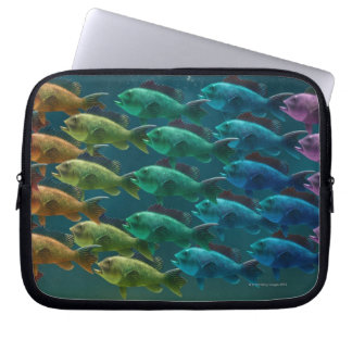 School of black sea bass in the colors of the laptop sleeve