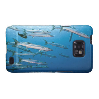 School of blackfin barracuda (Sphyraena qenie) Samsung Galaxy SII Case