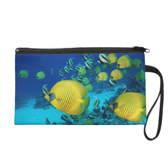 School of Butterfly Fish Swimming on the Seabed Wristlet
