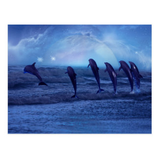 School of dolphins by moonlight postcard