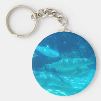 School of Dolphins Keychain