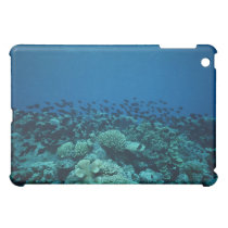 School of Fish 10 iPad Mini Cover