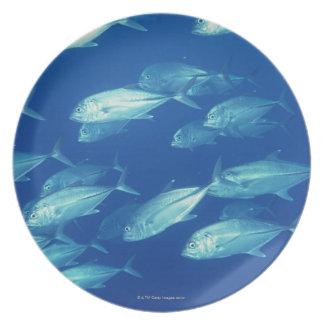 School of Fish 4 Dinner Plate