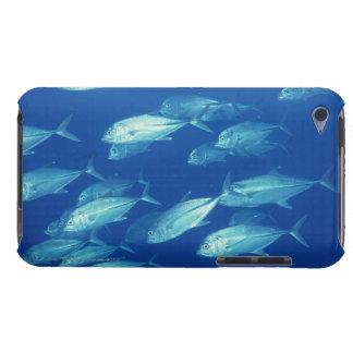 School of Fish 4 iPod Case-Mate Case