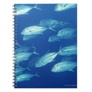 School of Fish 4 Notebook