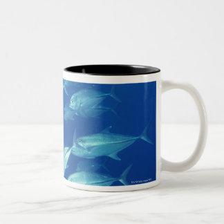 School of Fish 4 Two-Tone Coffee Mug
