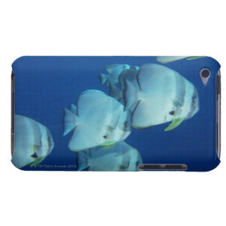 School of Fish 5 Barely There iPod Cover