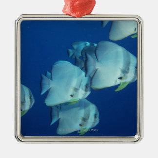 School of Fish 5 Christmas Tree Ornaments