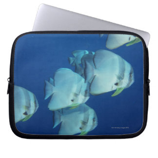 School of Fish 5 Computer Sleeves
