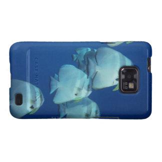 School of Fish 5 Galaxy SII Cases