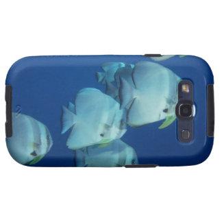 School of Fish 5 Galaxy SIII Covers