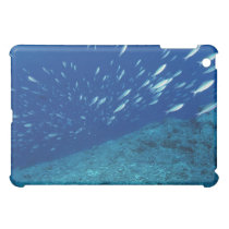 School of Fish 6 iPad Mini Case