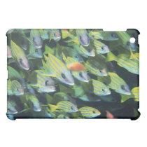 School of Fish 7 Cover For The iPad Mini