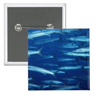 School of Fish 9 Button