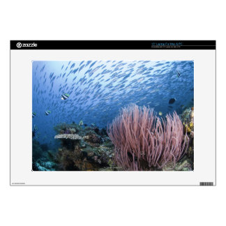 """School of fish above reef skin for 15"""" laptop"""