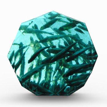 Beach Themed School of Fish Acrylic Award